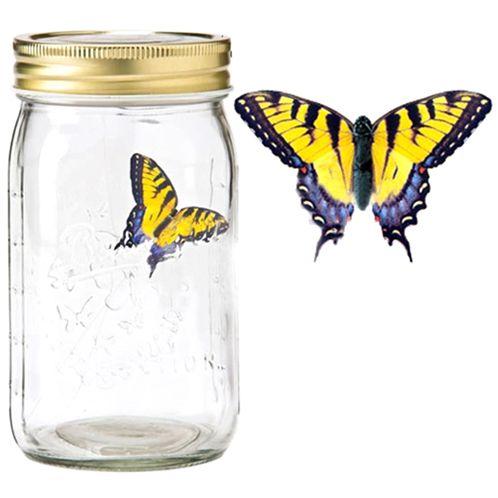 Характеристики: выглядят так же, как реальные бабочки в банке
