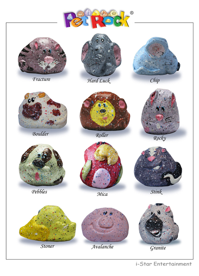 what are pet rocks