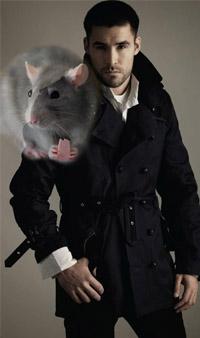Что подарить мужчине-крысе