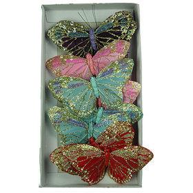Pink morpho - butterfly in a jar