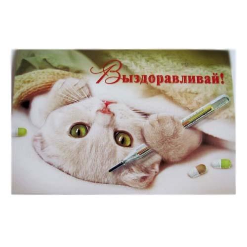 Почтовые открытки ростов-на-дону