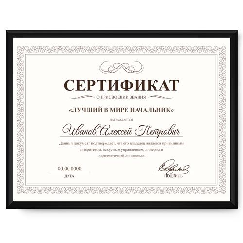 Подарок руководителю сертификат 94
