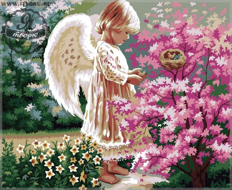 программа ангел для взятия заказов