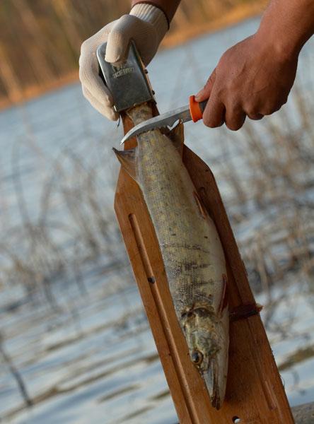 Доска для разделки рыбы из каучукового дерева купить в Москве: цены и отзывы - Миллион Подарков