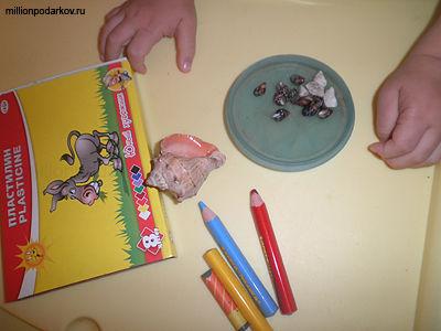 Поделки из ракушек своими руками фото