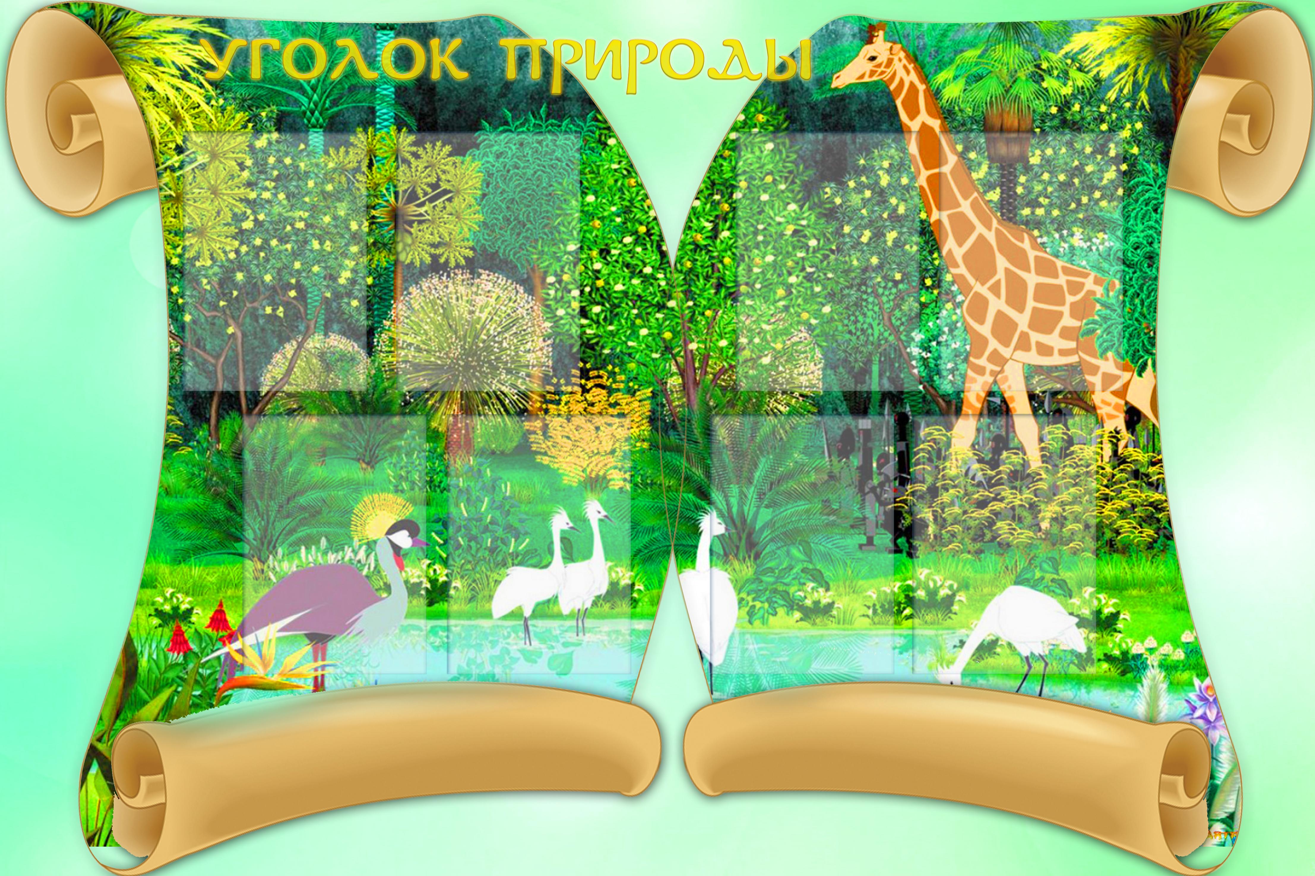 картинки на стенд в школе по природе