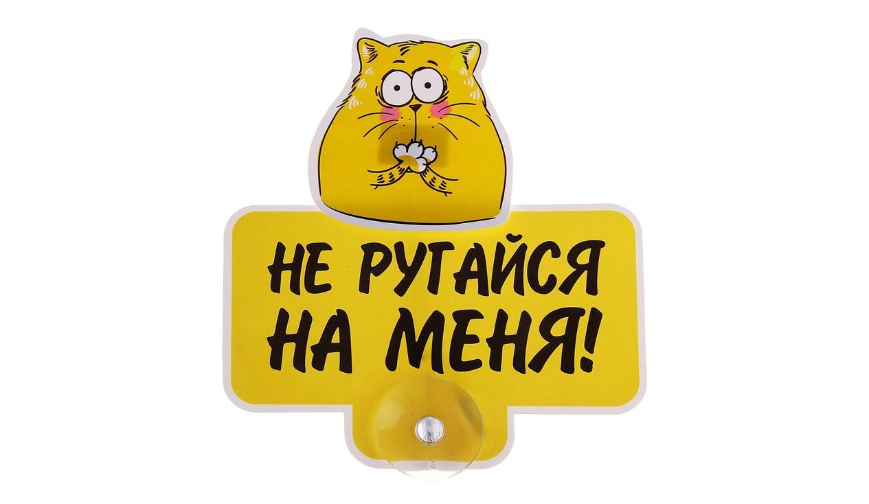 Картинки с надписями давай не будем ругаться, котята влюбленные