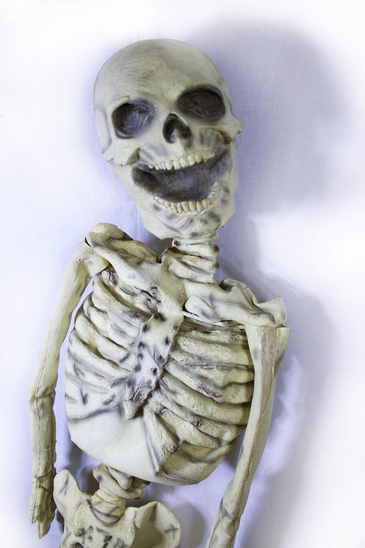 Картинки скелетиков смешных, открытка сад своими